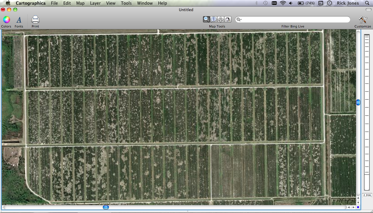Badly Undeveloped Land in Collier County Florida